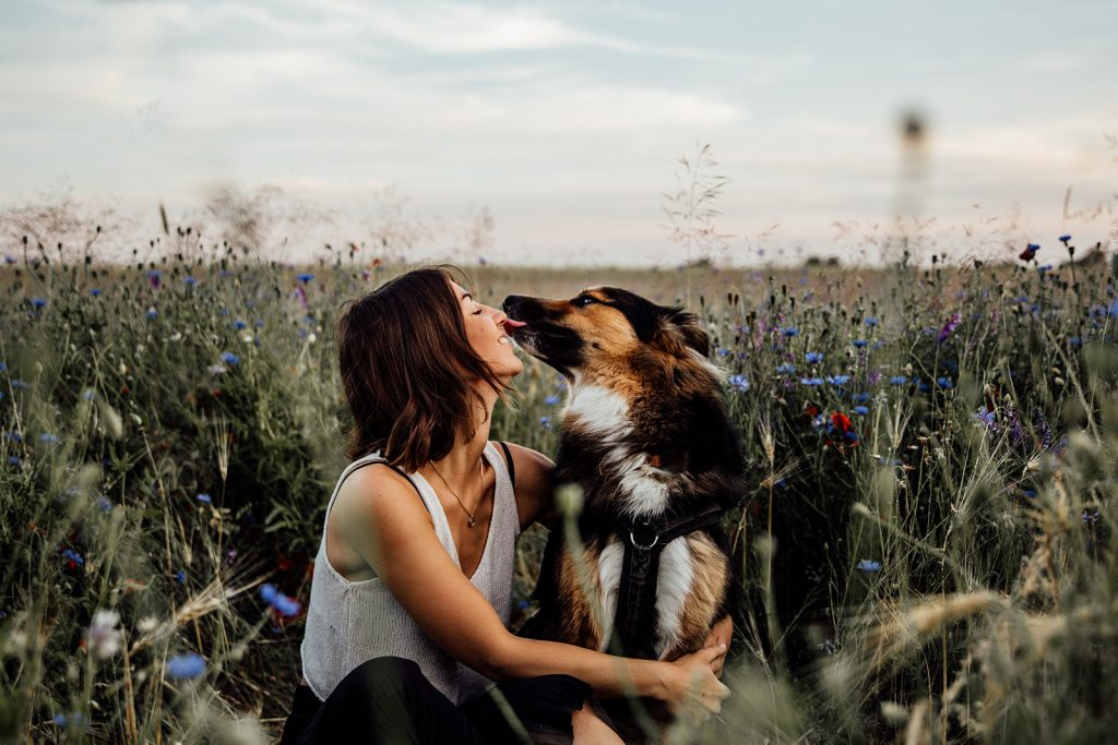 Hundefotoshooting, Professionelle Bilder Hund Berlin, Hundefotografie Berlin