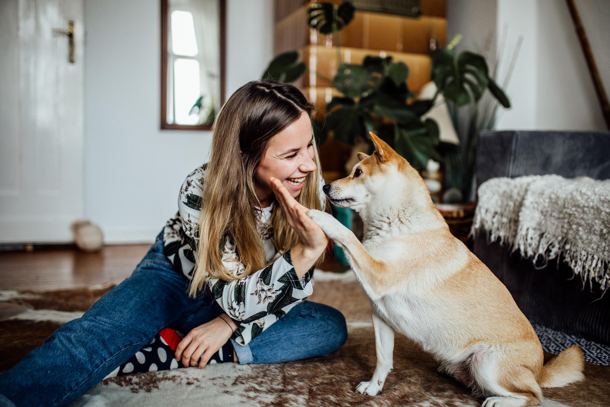 Frau sitzt mit Hund vor einem grauen Sofa, Hund gibt