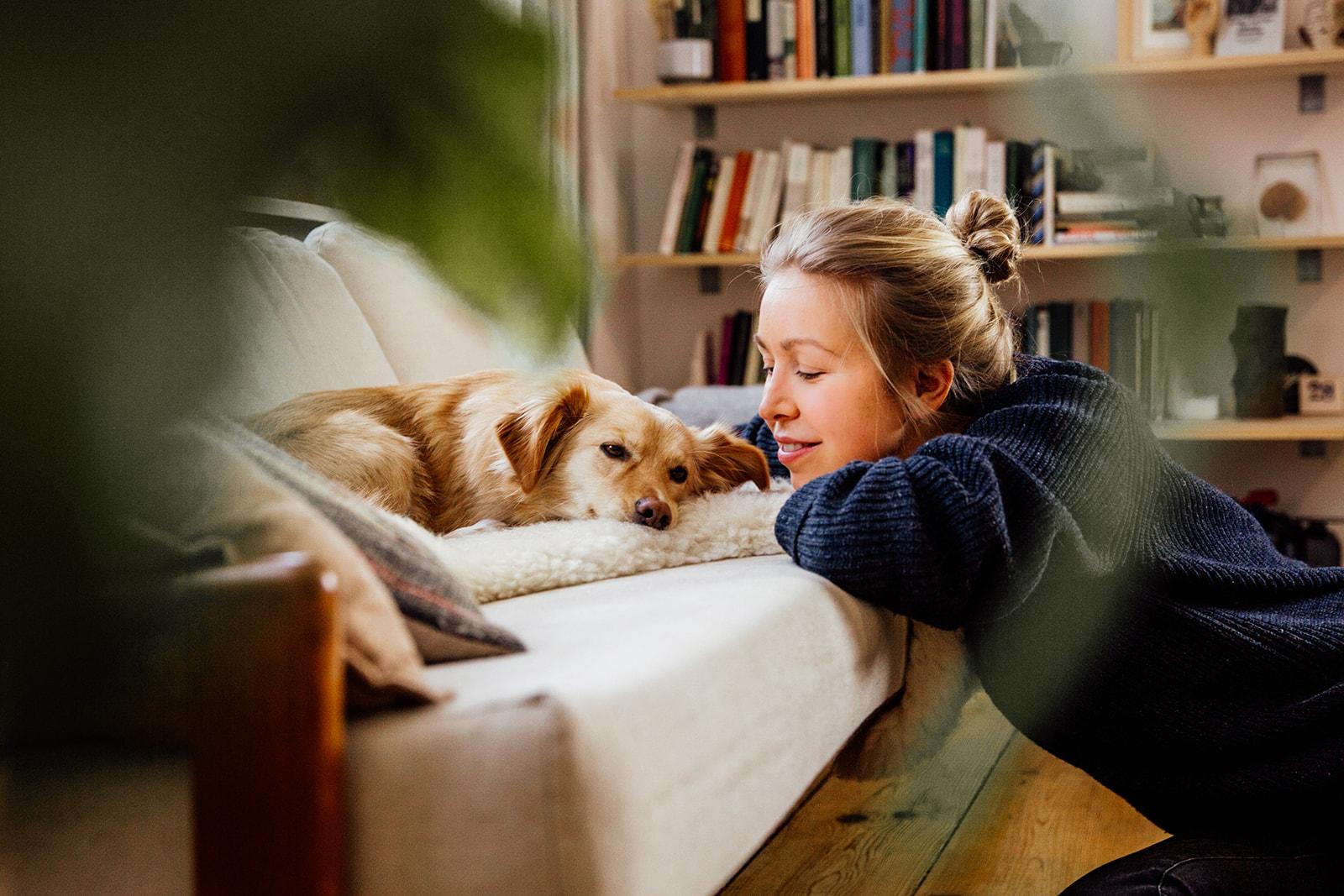 Hund liegt auf dem Sofa, Frau kniet neben Hund und schaut diesen an. Hundefotoshooting in Berlin